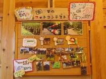 【イベント】里山フォトコンテスト。敷地内で撮影した思い出の写真を応募しよう♪