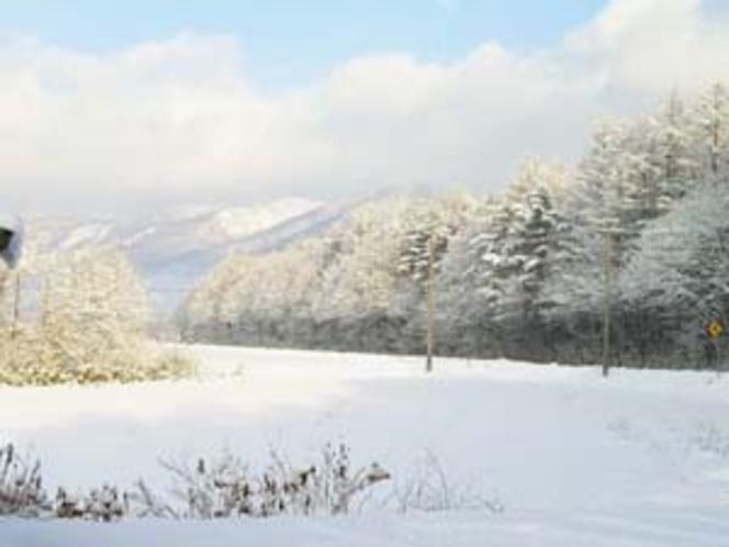雪・風景12