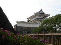 6月の舞鶴城公園