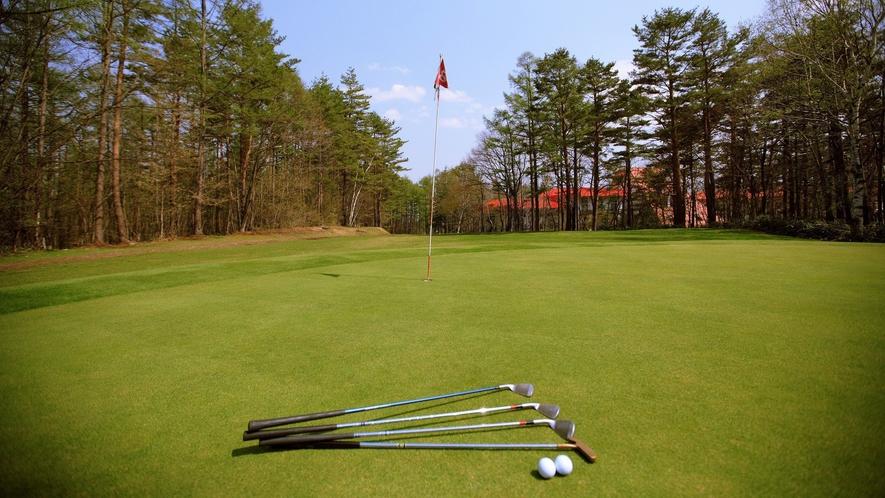 【アイアンゴルフ】ファミリーで、グループでお楽しみいただけます。