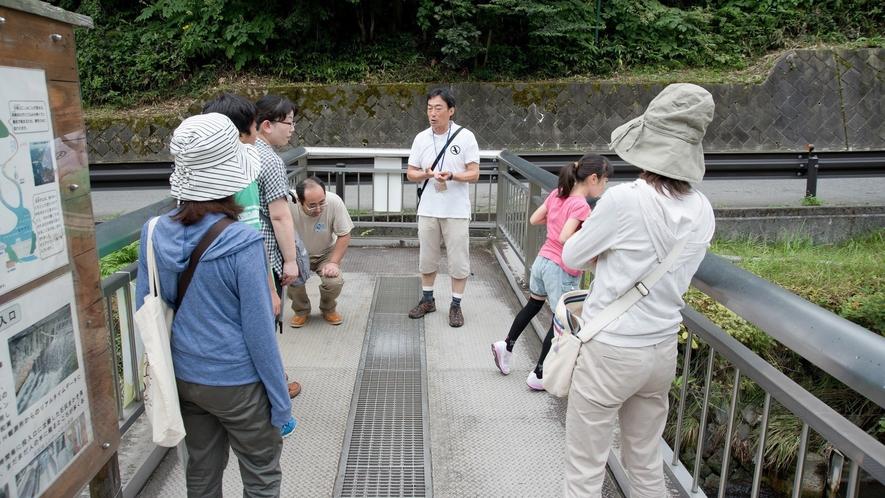 午前の温泉街散策は、草津の歴史や温泉、文化に触れる散策ツアーです。