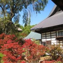 紅葉スポットが見事な『霊松寺』