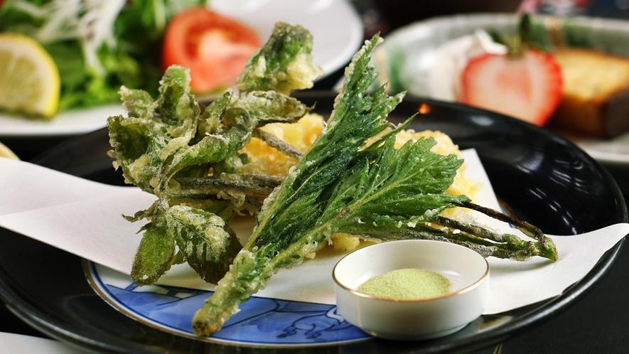 【日伊コラボSPRING2017】山菜好きが毎年通う山菜シーズン
