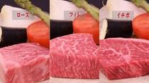 【日帰りランチ/一例】佐賀県産牛・佐賀牛ロース・佐賀牛ヒレの3プランよりお選びいただけます。