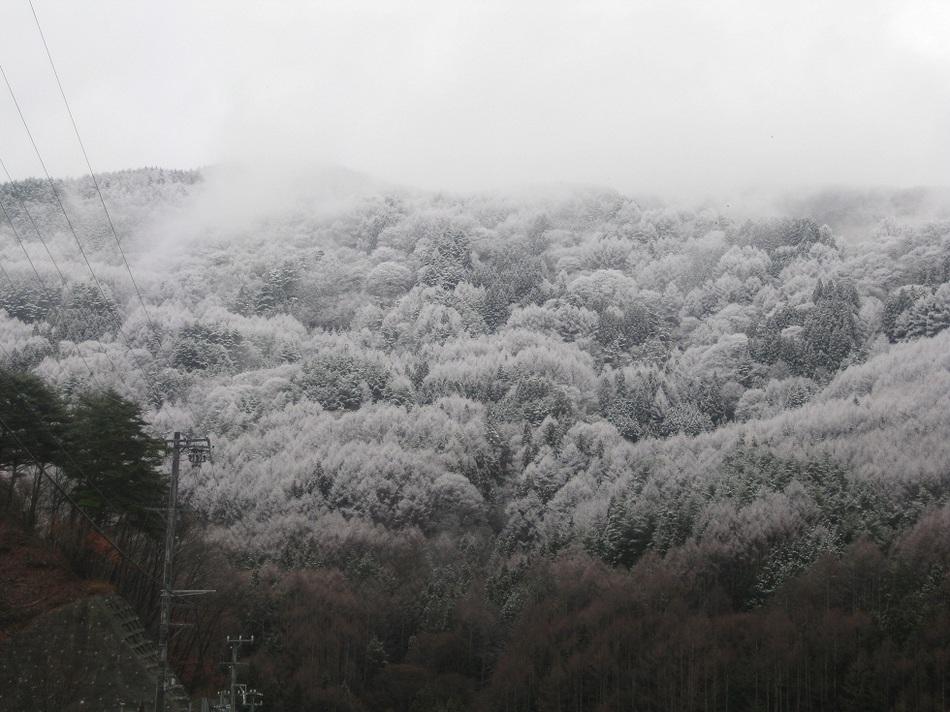 南アルプスの冬はー20度以下にまで冷えます