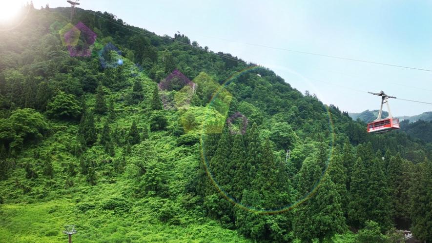 【ロケーション 山側】 湯沢高原ロープウェイ/トレインビュー新幹線の見えるお部屋もございます。