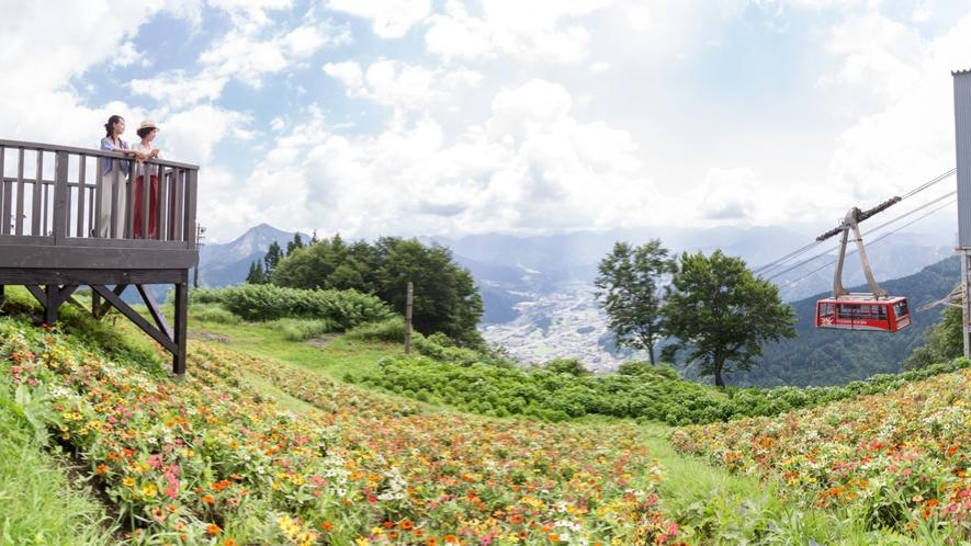 Greenシーズン『湯沢高原アルプの里』春のロープウェイ