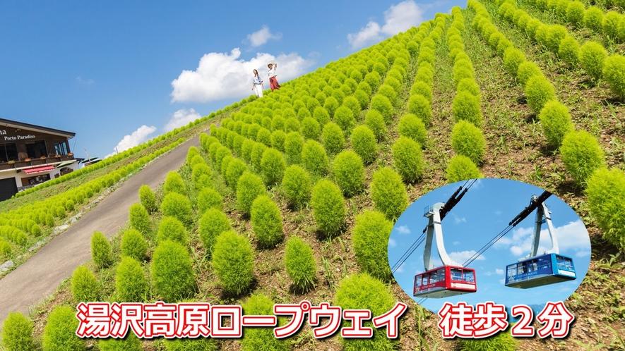 Greenシーズン『湯沢高原アルプの里』ロープウェイ乗り場まで徒歩2分