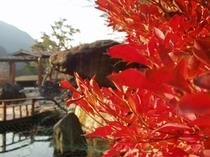 ホテル内日本庭園・紅葉の頃