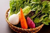 辻農園さんの有機無農薬野菜を使用