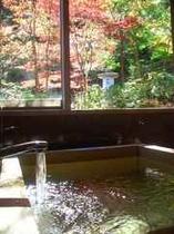 檜風呂から臨む四季折々の自然・・・陽だまりの