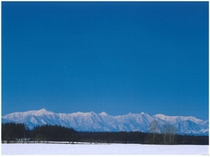 冬:雪の朝