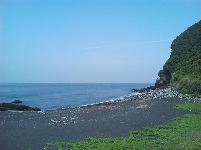 野田浜海岸