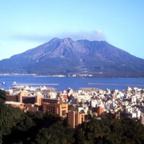 桜島を望む城山の高台