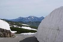 初夏 乗鞍岳のミニ雪の回廊