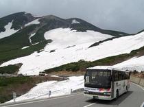 初夏 大雪渓。サマースキー