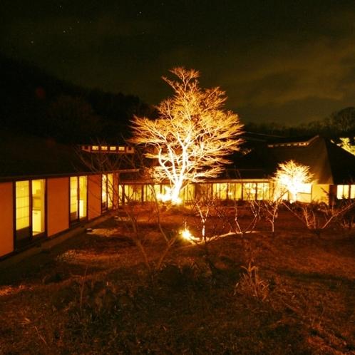 【館内】庭園夜