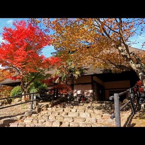【外観】秋