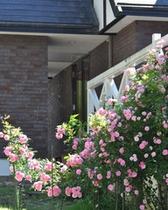 薔薇で囲まれたシャレーグリンデルのテラス