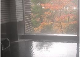 四季折々の景色が楽しめる温泉