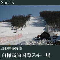 ▼白樺高原国際スキー場B
