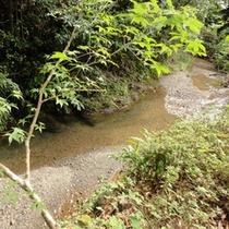 川のせせらぎを聞きながら、ゆったり入浴&森林浴で癒されて下さい