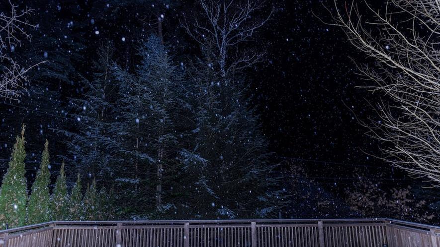 雪が舞う夜空~テラス~
