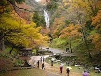 神庭の滝・紅葉風景