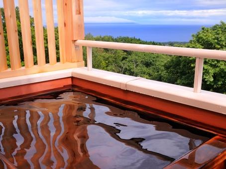 ■ 海一望の絶景を満喫!専用露天風呂付和洋室 エッフェル■