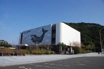 太地の博物館