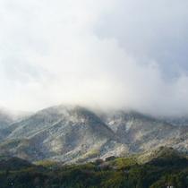山側のお部屋からの眺望