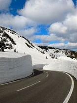 八幡平の雪の回廊