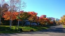 秋のペンションビレッジ