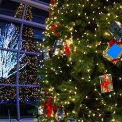 【早割60】☆12月11日・18日・25日限定☆わくわく♪クリスマスパーティプラン<一泊二食付>