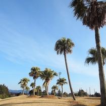 樹齢40年以上の常緑樹に囲まれた美しい18ホール☆