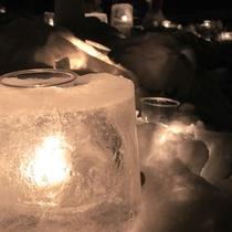 老神温泉「雪ほたる」