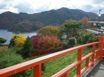 釜石大観音からの風景①