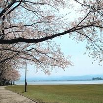 ◆柴山潟湖畔公園