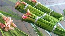 【菖蒲湯】毎年6月加賀温泉郷の菖蒲湯まつりに合わせて6/3・4を菖蒲湯にしております※過去開催の様子