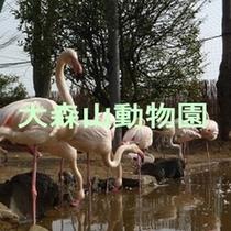 動物園プラン