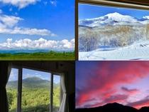 庭や窓からの風景☆