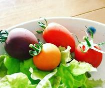 オーガニックのお野菜☆