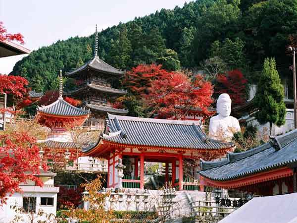壷阪寺の紅葉