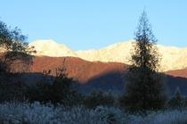 snowからの三段紅葉