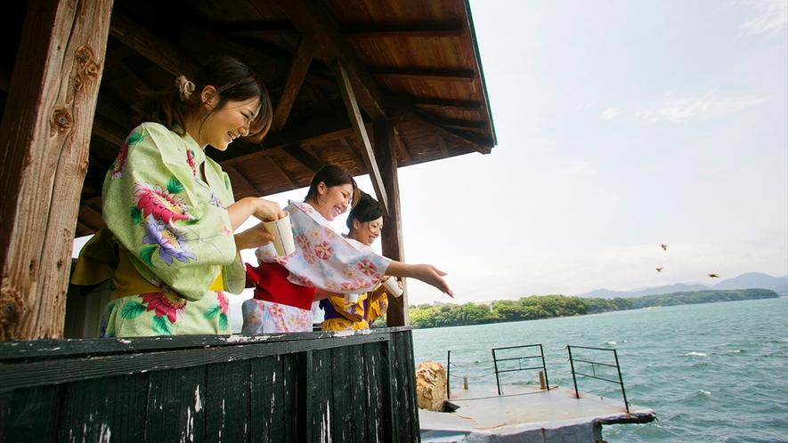 ◆魚のえづけコーナー