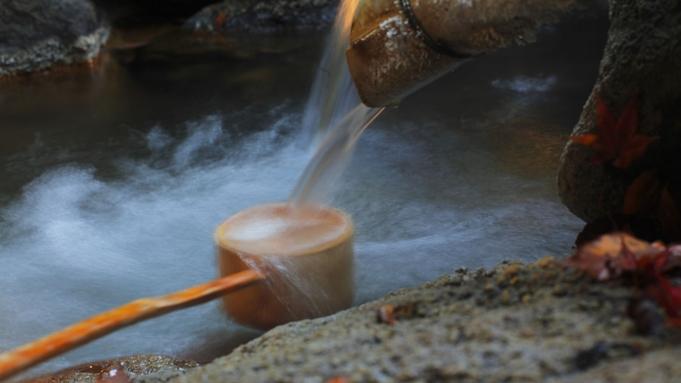 【素泊まり】22時インOK!めいっぱい観光&遊びたい♪いつでも自由な天然温泉の旅!