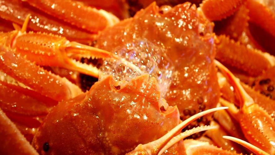 ★冬の醍醐味!絶品・活き蟹を味わう大人の旅。【本格・活蟹会席イメージ】