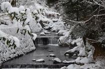 別館への道【渓流眺め】/雪景色