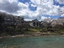 桜 川側から全景