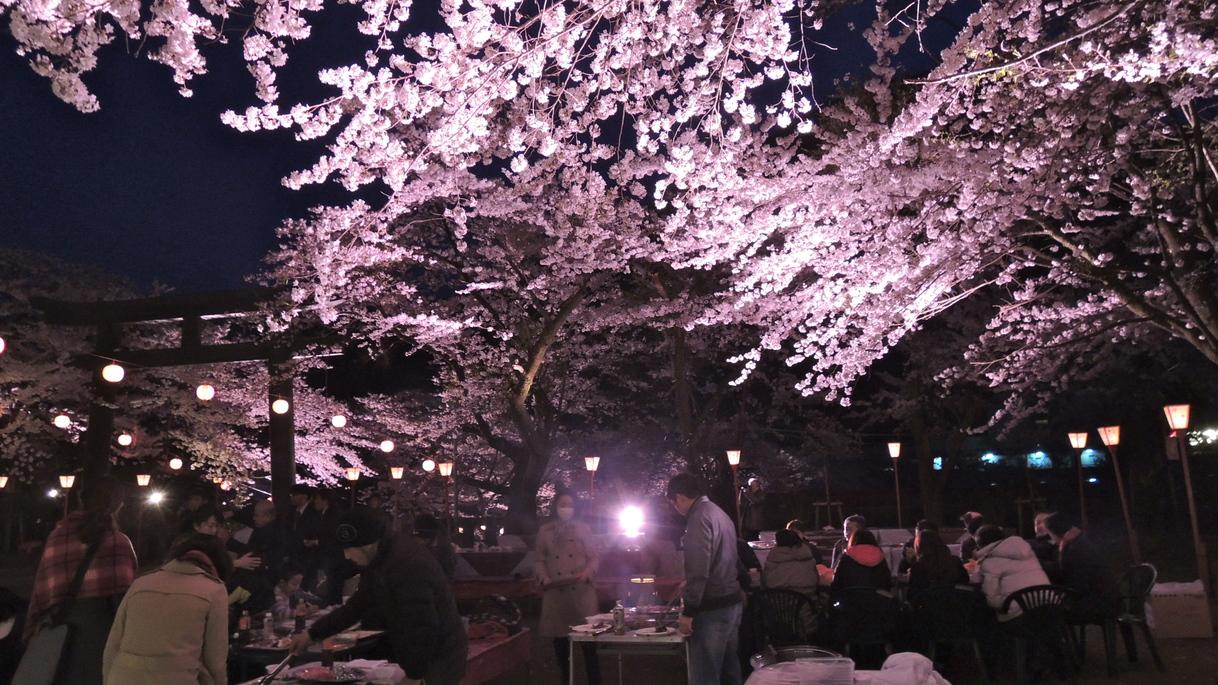 鬼怒川夜桜花見